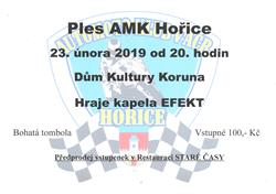 Ples AMK